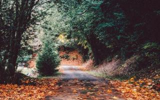 Three Night Autumn Escape